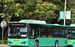 广州从5路班车公交车路线