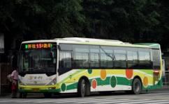 广州15路公交车路线