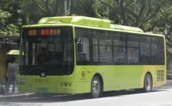 广州花11路公交车路线
