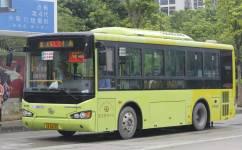 广州花31路公交车路线