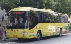 广州206路公交车路线