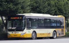 广州974路公交车路线