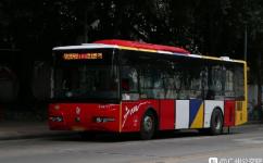 广州181路公交车路线