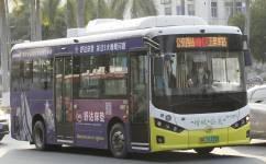 广州增城17路公交车路线