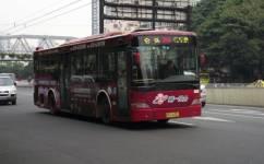 广州264路公交车路线