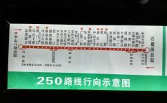 广州250路公交车路线