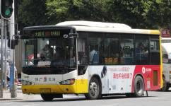 广州佛278路公交车路线
