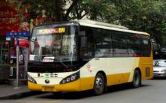 广州479路公交车路线