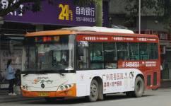 广州番165路公交车路线