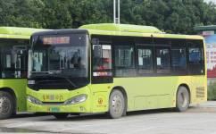 广州花15路公交车路线