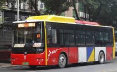 广州花81路公交车路线