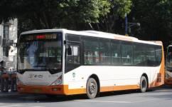 广州高峰快线65公交车路线