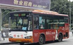 广州番91路公交车路线