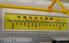 广州从503路公交车路线