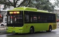 广州花1B路公交车路线