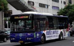 广州195路公交车路线