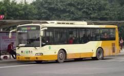 广州987路公交车路线
