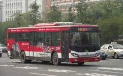 广州547路公交车路线
