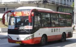 广州新塘10路公交车路线
