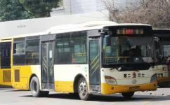 广州番81路公交车路线