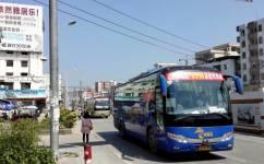 广州广从11线公交车路线