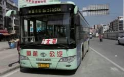 广州从化5路公交车路线