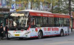广州544路公交车路线