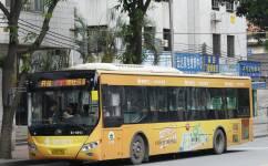 广州277路公交车路线