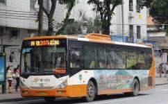 广州207路公交车路线