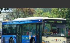 广州从化汽车站白水寨专线公交车路线