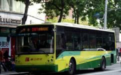 广州287路公交车路线