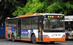 广州299路公交车路线