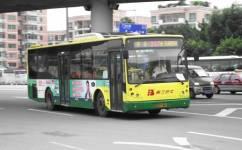 广州257路公交车路线