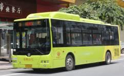 广州花10路公交车路线