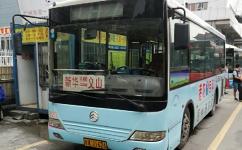广州花80路公交车路线