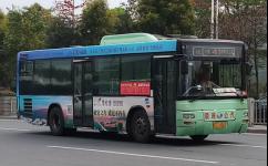 广州从4路公交车路线