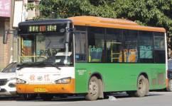广州番101路公交车路线