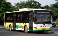 广州529路公交车路线
