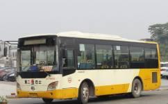 广州番77路公交车路线