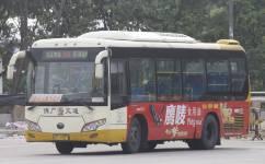 广州佛236路公交车路线
