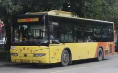 广州花16路公交车路线