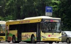 广州273路公交车路线