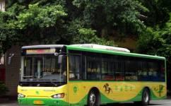广州541路公交车路线