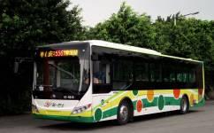 广州556路公交车路线