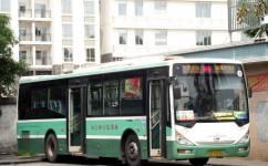 广州番6路公交车路线