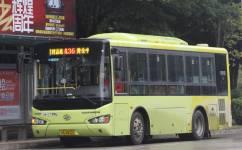 广州花36路公交车路线
