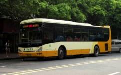 广州182路公交车路线