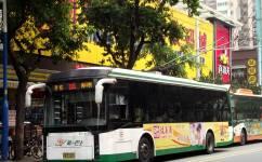 广州101路公交车路线