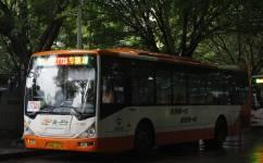 广州772A路公交车路线