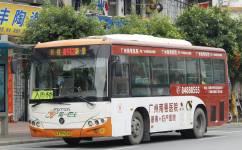 广州番142路公交车路线